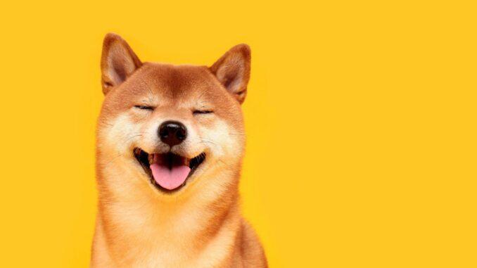 El precio de Dogecoin cae 1.2% a $ 0.196 - ¿Dónde comprar ...
